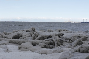 Frozen beach with the Buffalo skyline in the background.